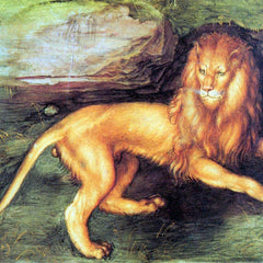 The Museum Outlet - Lion by Durer