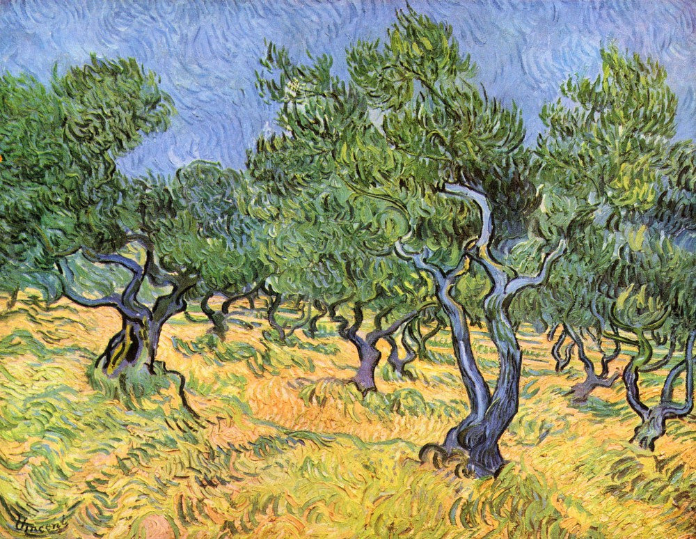 The Museum Outlet - Olive Trees by Van Gogh
