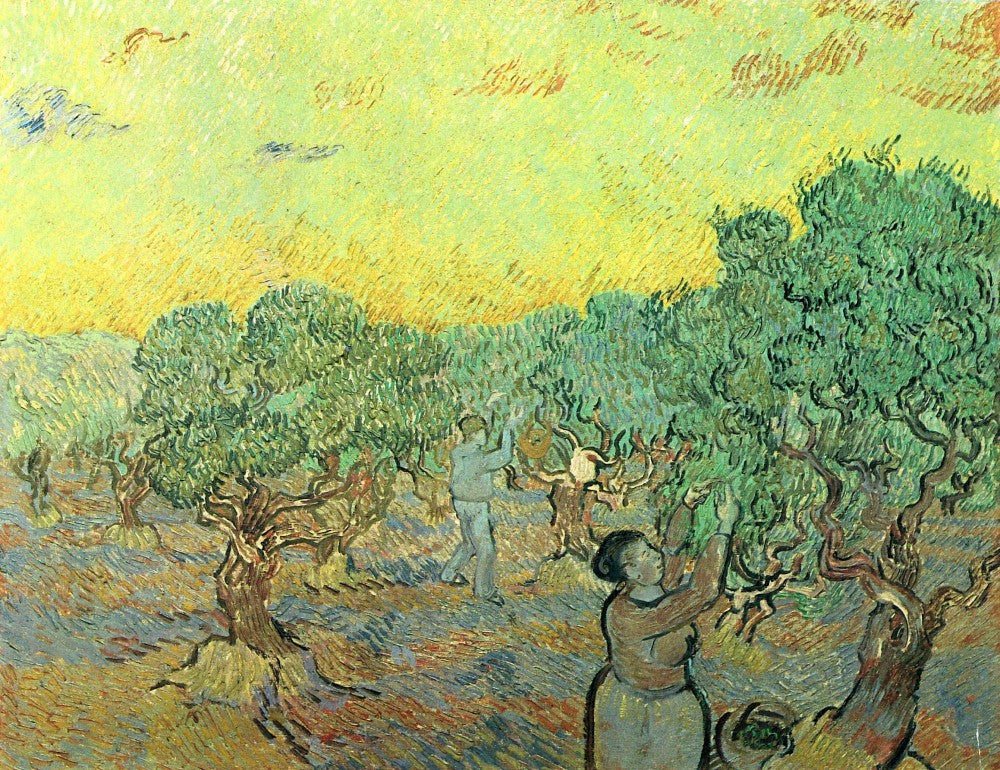 The Museum Outlet - Olive pickers in a grove by Van Gogh