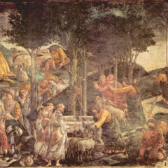 The Museum Outlet - Sistine Chapel -The youth of Moses by Botticelli