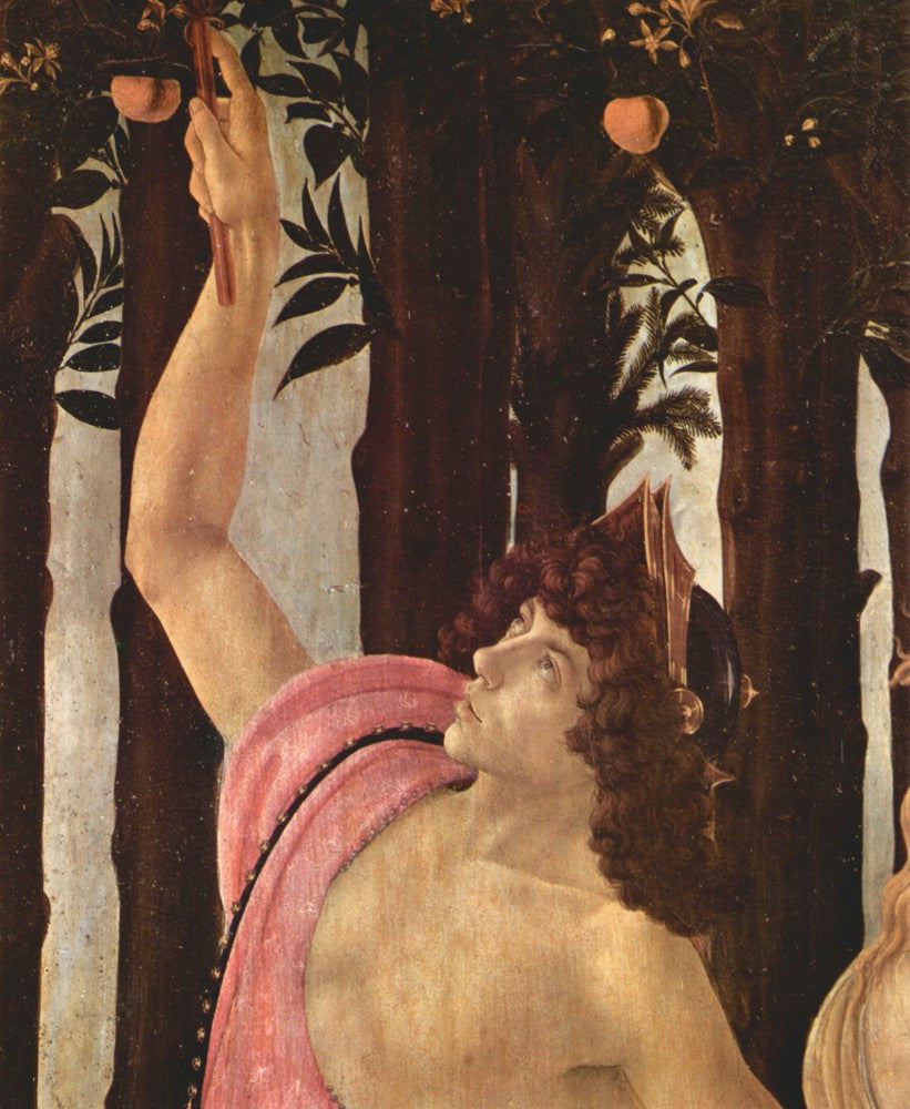 The Museum Outlet - Spring (Primavera), detail [3] by Botticelli