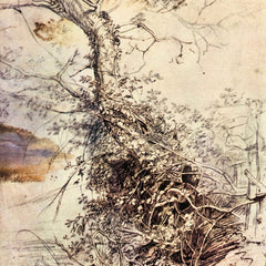 The Museum Outlet - Study of Tree by Rubens