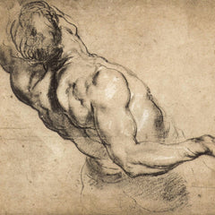 The Museum Outlet - Study of man's torso by Rubens