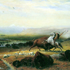 The Museum Outlet - The last Buffalo by Bierstadt