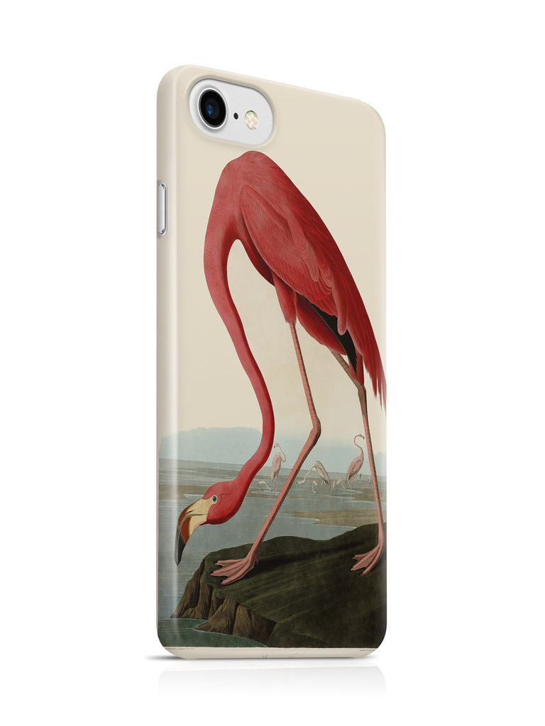 Vinteja Officially Licensed - Audubon - American Flamingo - Curated Case Cover For IPHONE 7