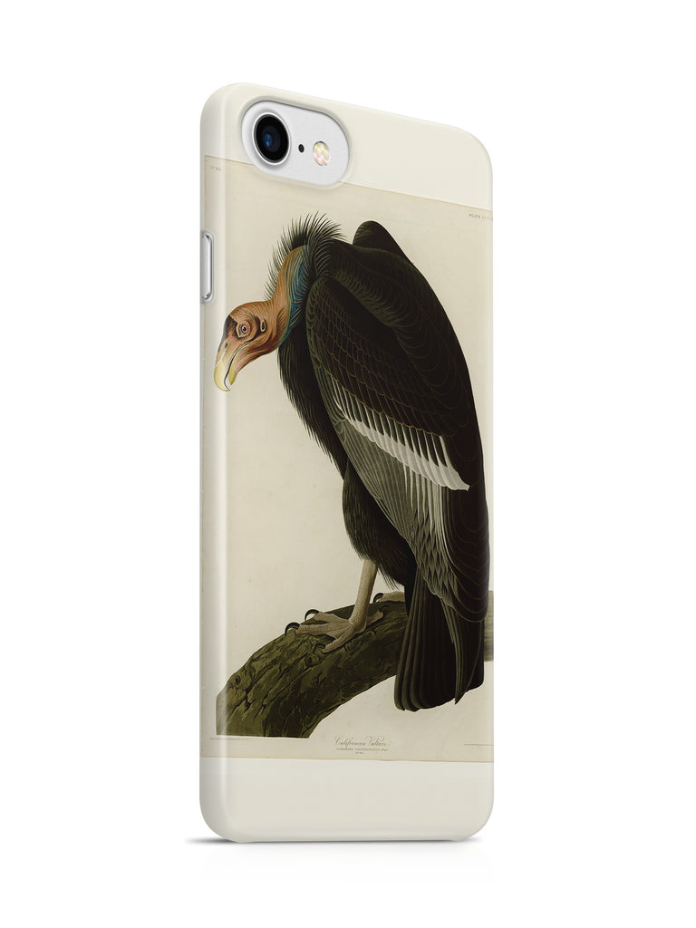 Vinteja Officially Licensed - Audubon - Californian Vulture - Plate 426 - Curated Case Cover For IPHONE 6/6S