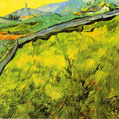 The Museum Outlet - Wall by Van Gogh