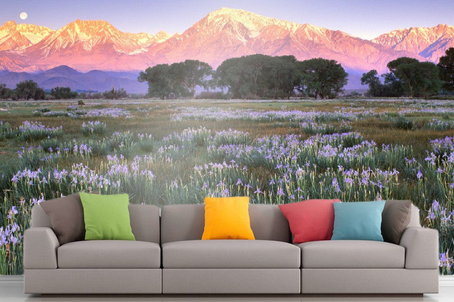Roshni Arts - Curated Art Wall Mural - Nature Series - 1112 | Self-Adhesive Vinyl Furnishings Decor Wall Art