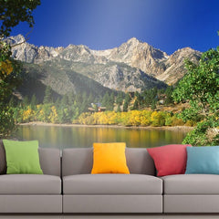 Roshni Arts - Curated Art Wall Mural - Nature Series - 21 | Self-Adhesive Vinyl Furnishings Decor Wall Art