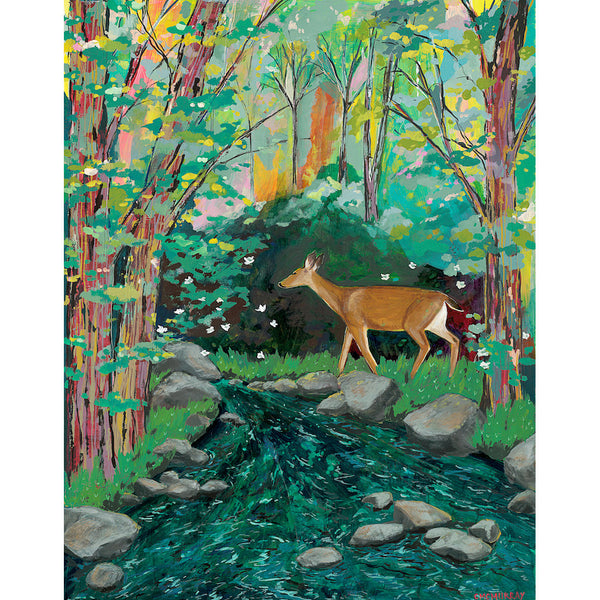 deer by a creek in a forest
