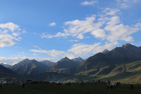 The Camp at the 2016 World Nomad Games