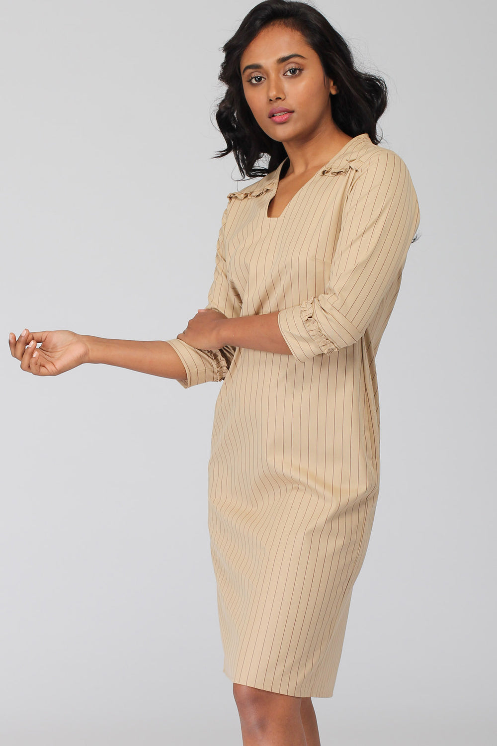 Hudson Pinstripe Shift Dress