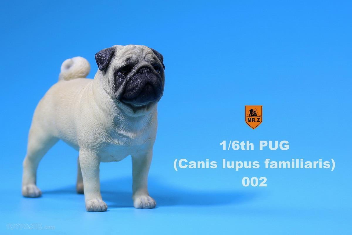 Mr. Z - Real Animal Series No. 18 - Pug 002 (Beige) (1/6 Scale)