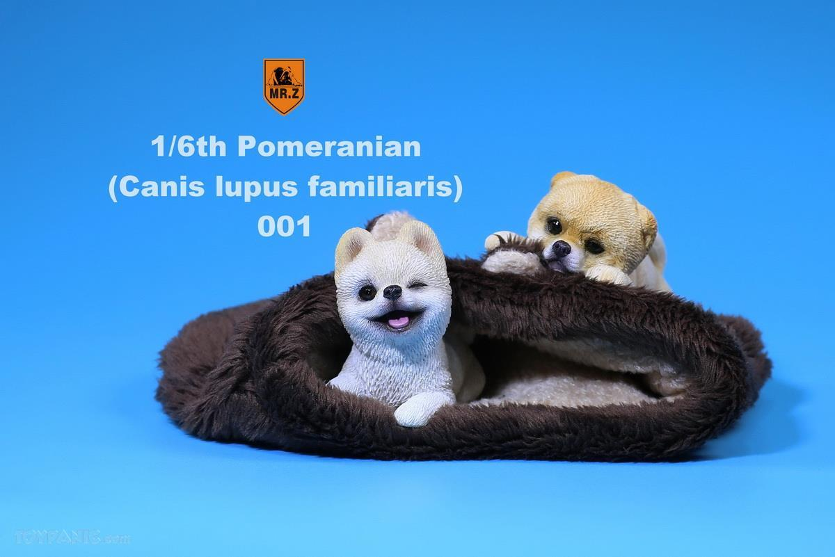 Mr. Z - Real Animal Series No. 20 - Pomeranian Puppies Set of 2 001 (Beige) (1/6 Scale)