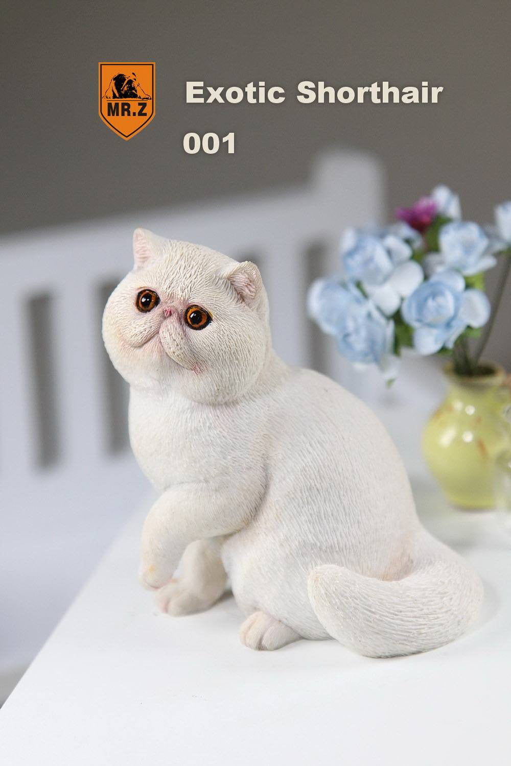 MR.Z - Real Animal Series No.8 - 1/6th Scale Exotic Shorthair Cat (Garfield) 001-005 - Marvelous Toys - 2