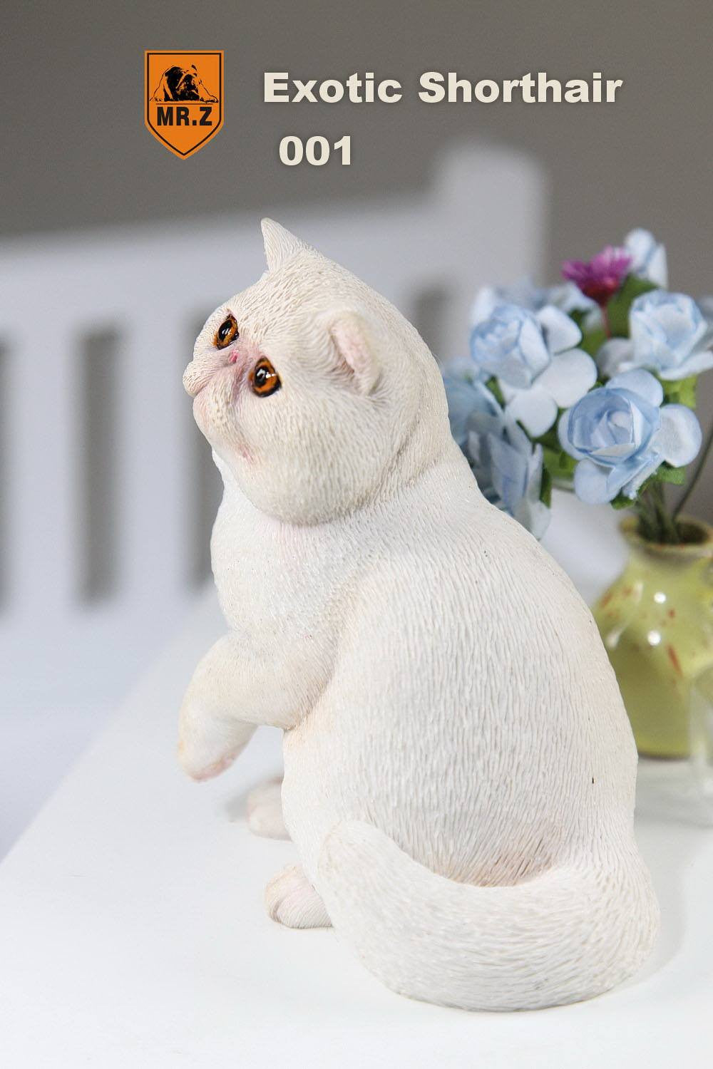 MR.Z - Real Animal Series No.8 - 1/6th Scale Exotic Shorthair Cat (Garfield) 001-005 - Marvelous Toys - 3