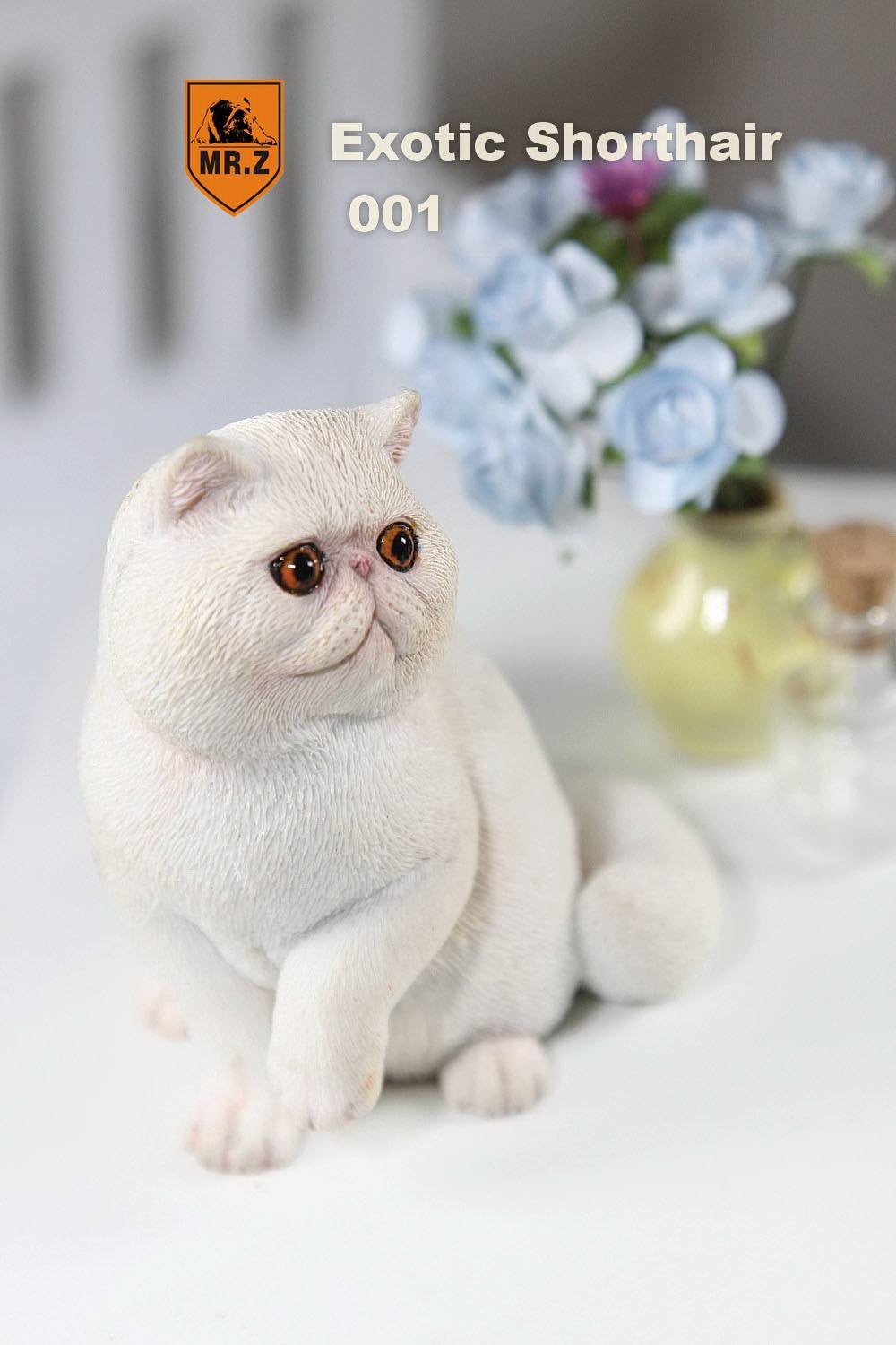 MR.Z - Real Animal Series No.8 - 1/6th Scale Exotic Shorthair Cat (Garfield) 001-005 - Marvelous Toys - 5