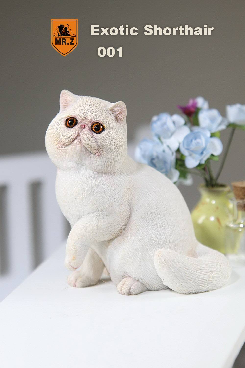 MR.Z - Real Animal Series No.8 - 1/6th Scale Exotic Shorthair Cat (Garfield) 001-005 - Marvelous Toys - 7
