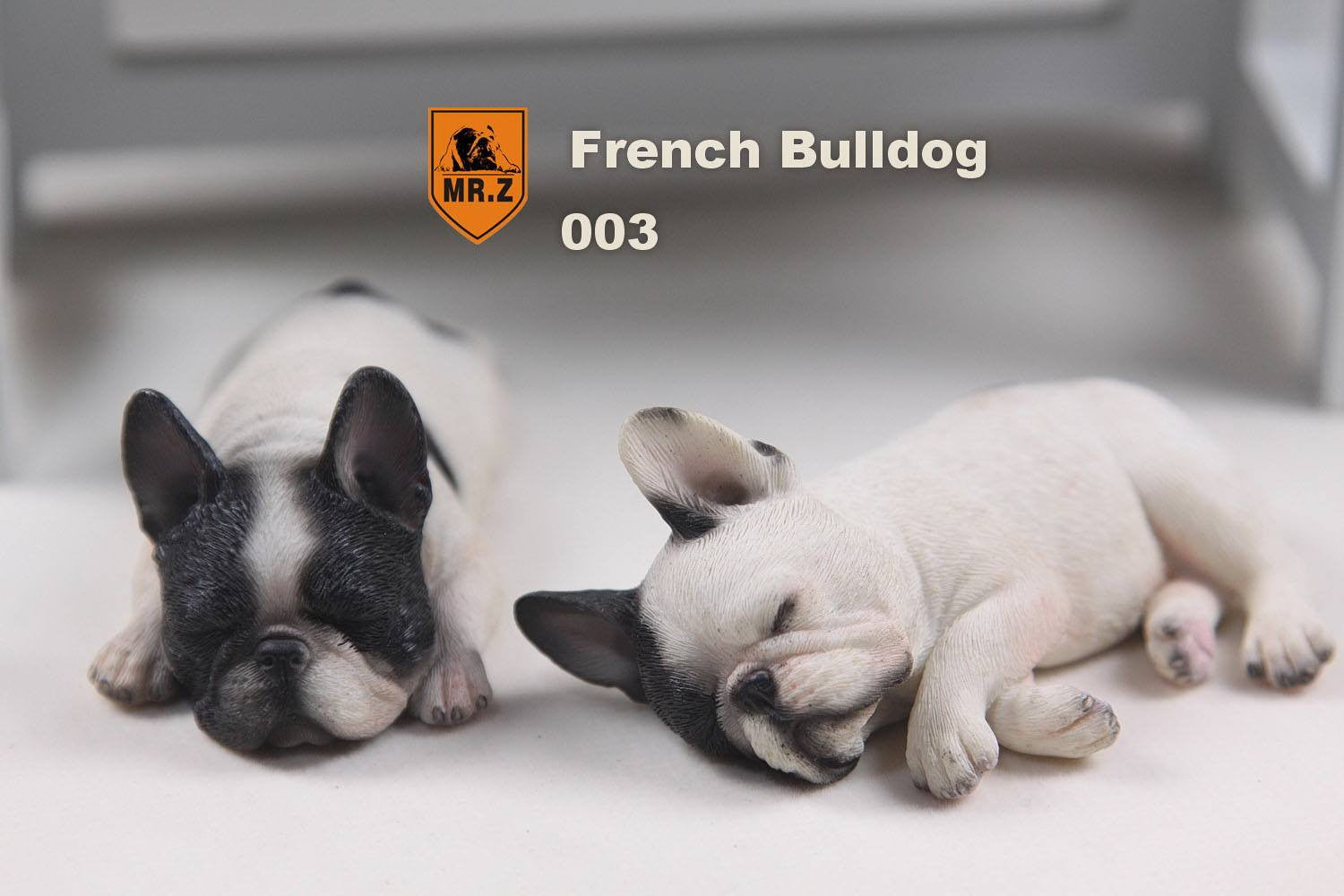 MR.Z - Real Animal Series No.9 - 1/6th Scale French Bulldog (Sleep Mode) 001-005 - Marvelous Toys - 13