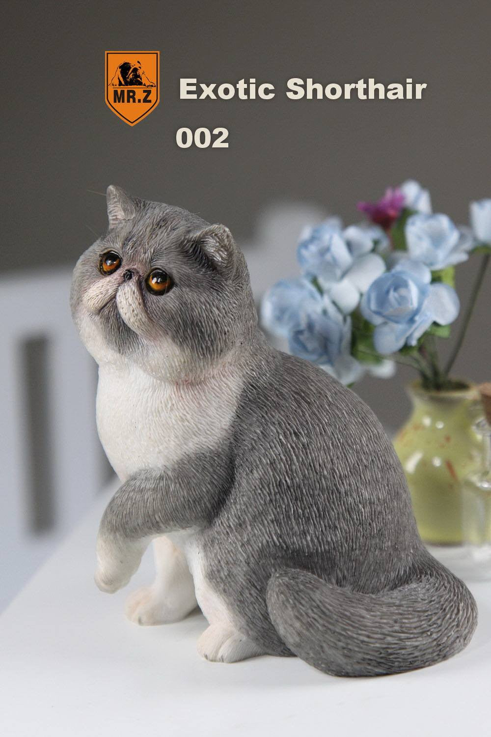 MR.Z - Real Animal Series No.8 - 1/6th Scale Exotic Shorthair Cat (Garfield) 001-005 - Marvelous Toys - 13