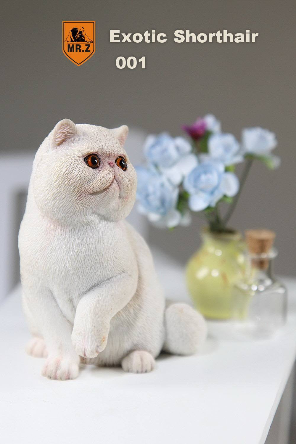 MR.Z - Real Animal Series No.8 - 1/6th Scale Exotic Shorthair Cat (Garfield) 001-005 - Marvelous Toys - 8