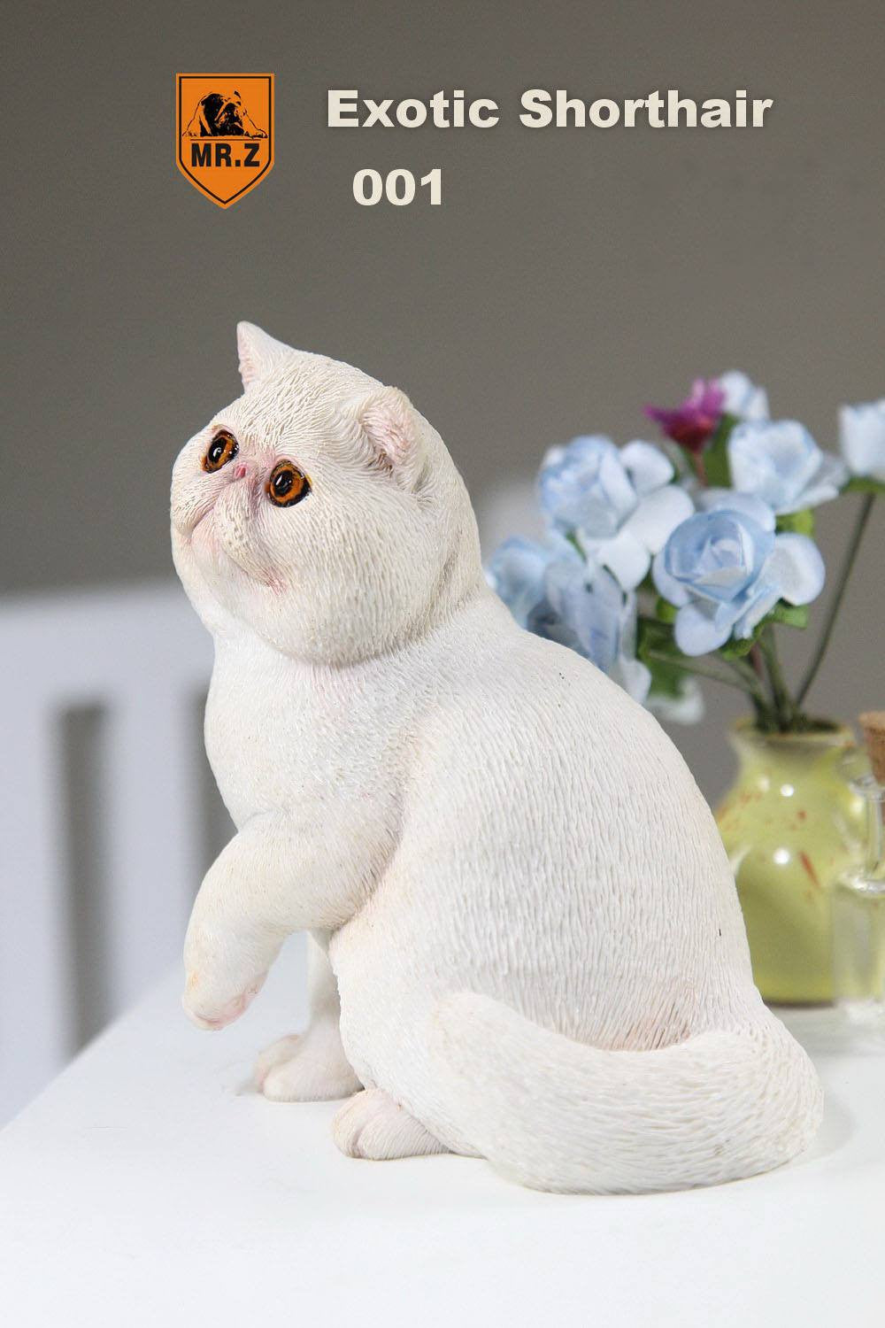 MR.Z - Real Animal Series No.8 - 1/6th Scale Exotic Shorthair Cat (Garfield) 001-005 - Marvelous Toys - 10