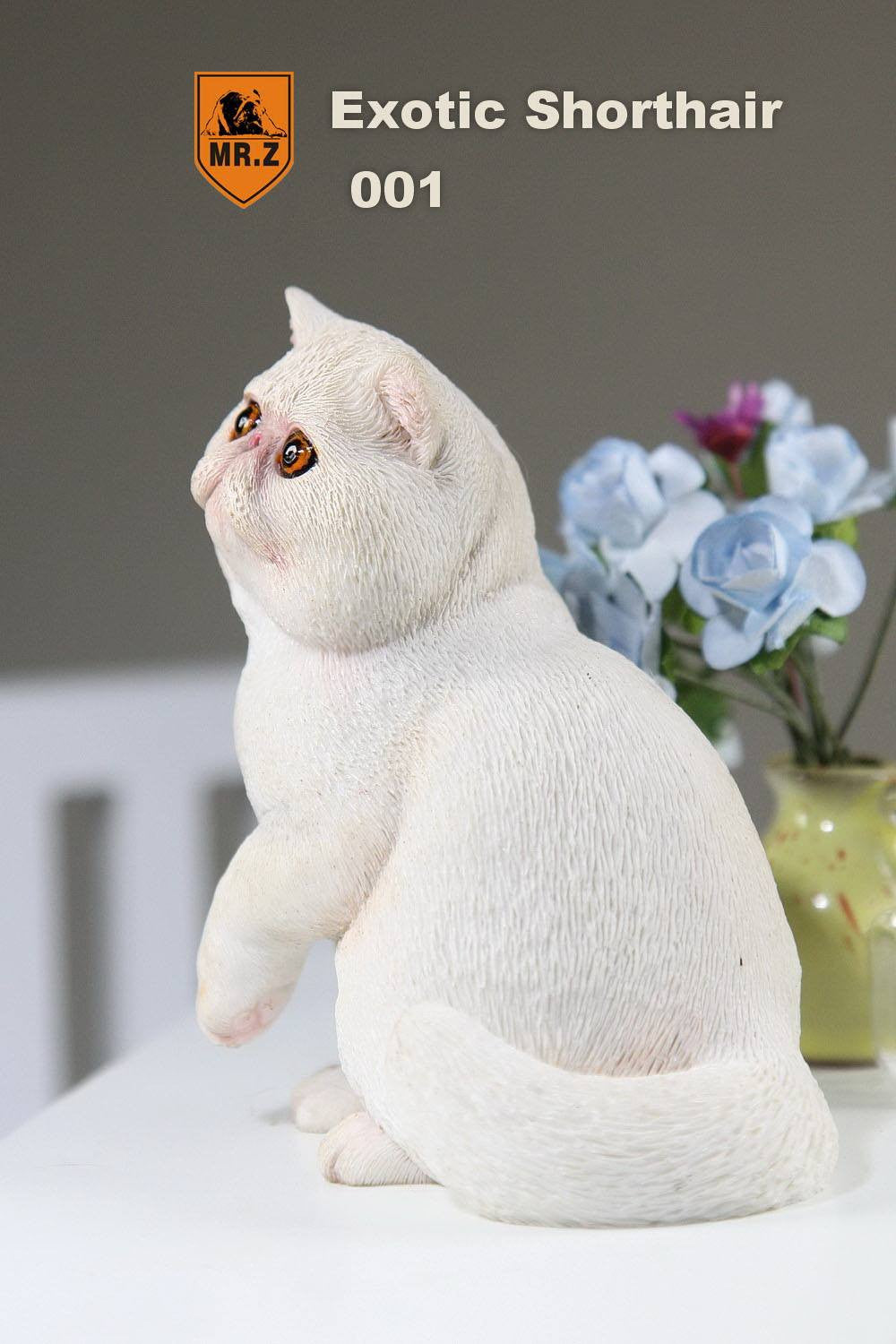 MR.Z - Real Animal Series No.8 - 1/6th Scale Exotic Shorthair Cat (Garfield) 001-005 - Marvelous Toys - 9