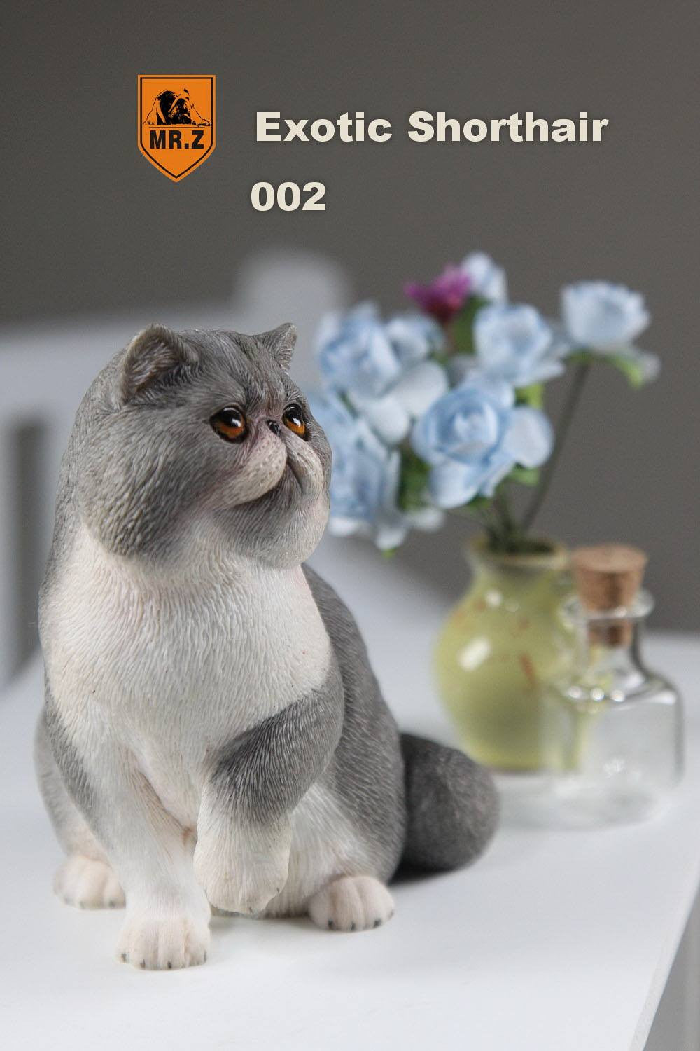 MR.Z - Real Animal Series No.8 - 1/6th Scale Exotic Shorthair Cat (Garfield) 001-005 - Marvelous Toys - 15