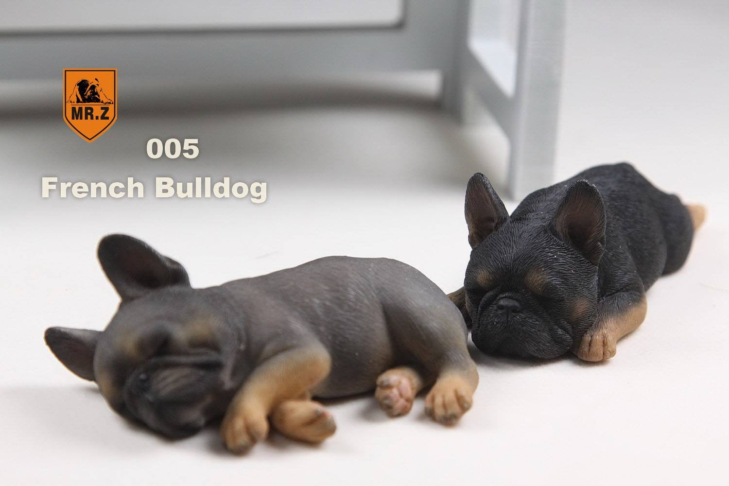 MR.Z - Real Animal Series No.9 - 1/6th Scale French Bulldog (Sleep Mode) 001-005