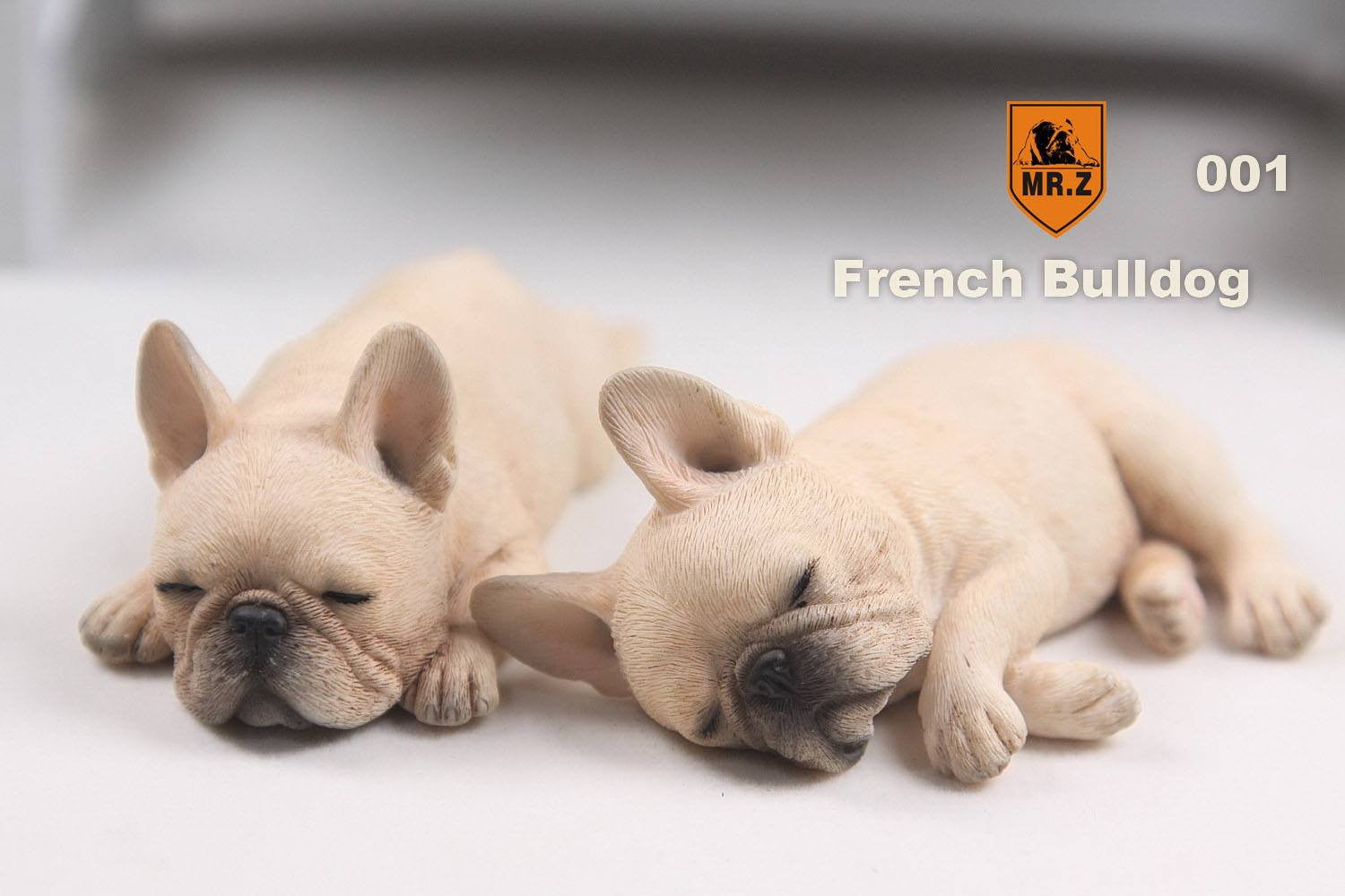 MR.Z - Real Animal Series No.9 - 1/6th Scale French Bulldog (Sleep Mode) 001-005 - Marvelous Toys - 4