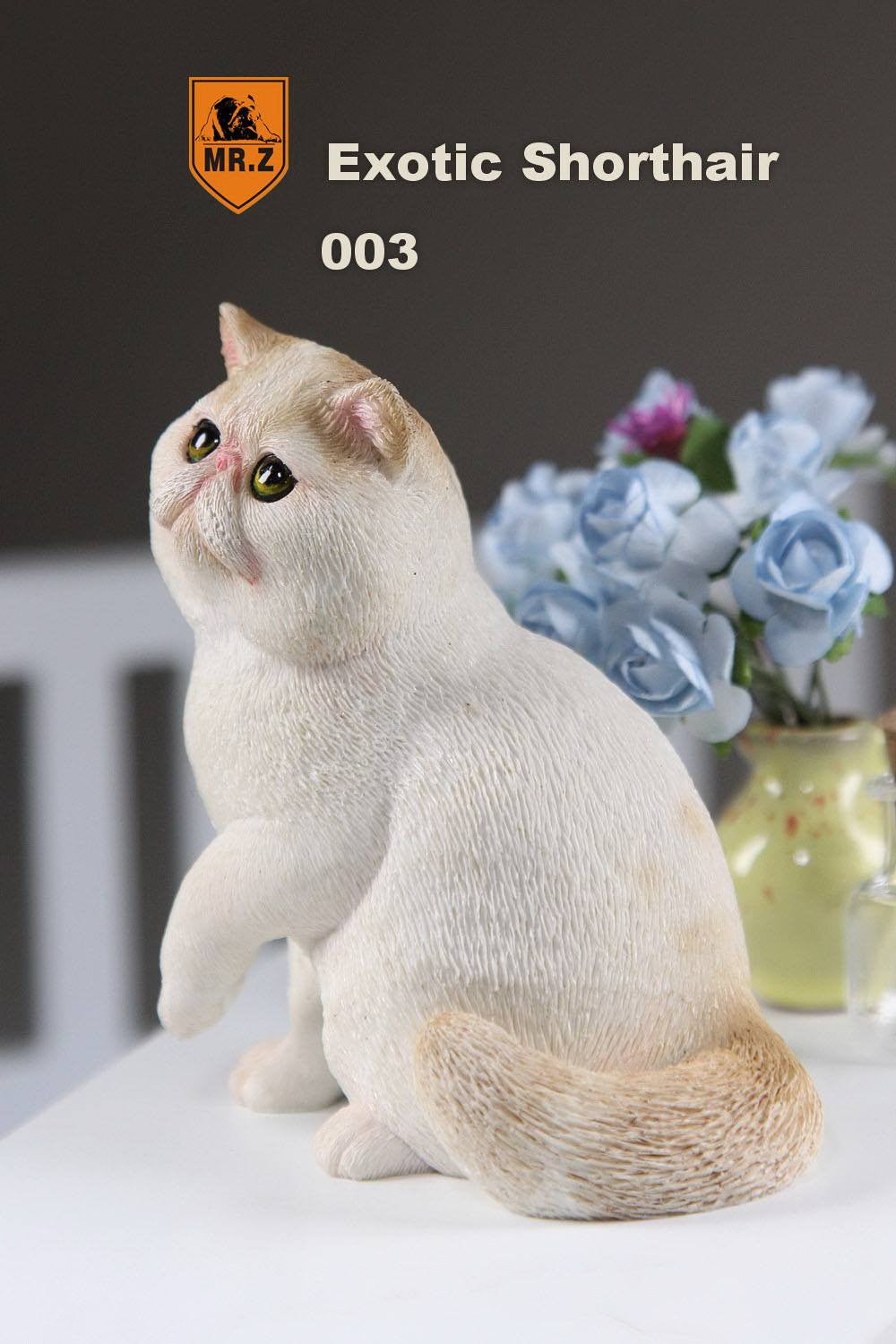MR.Z - Real Animal Series No.8 - 1/6th Scale Exotic Shorthair Cat (Garfield) 001-005 - Marvelous Toys - 22