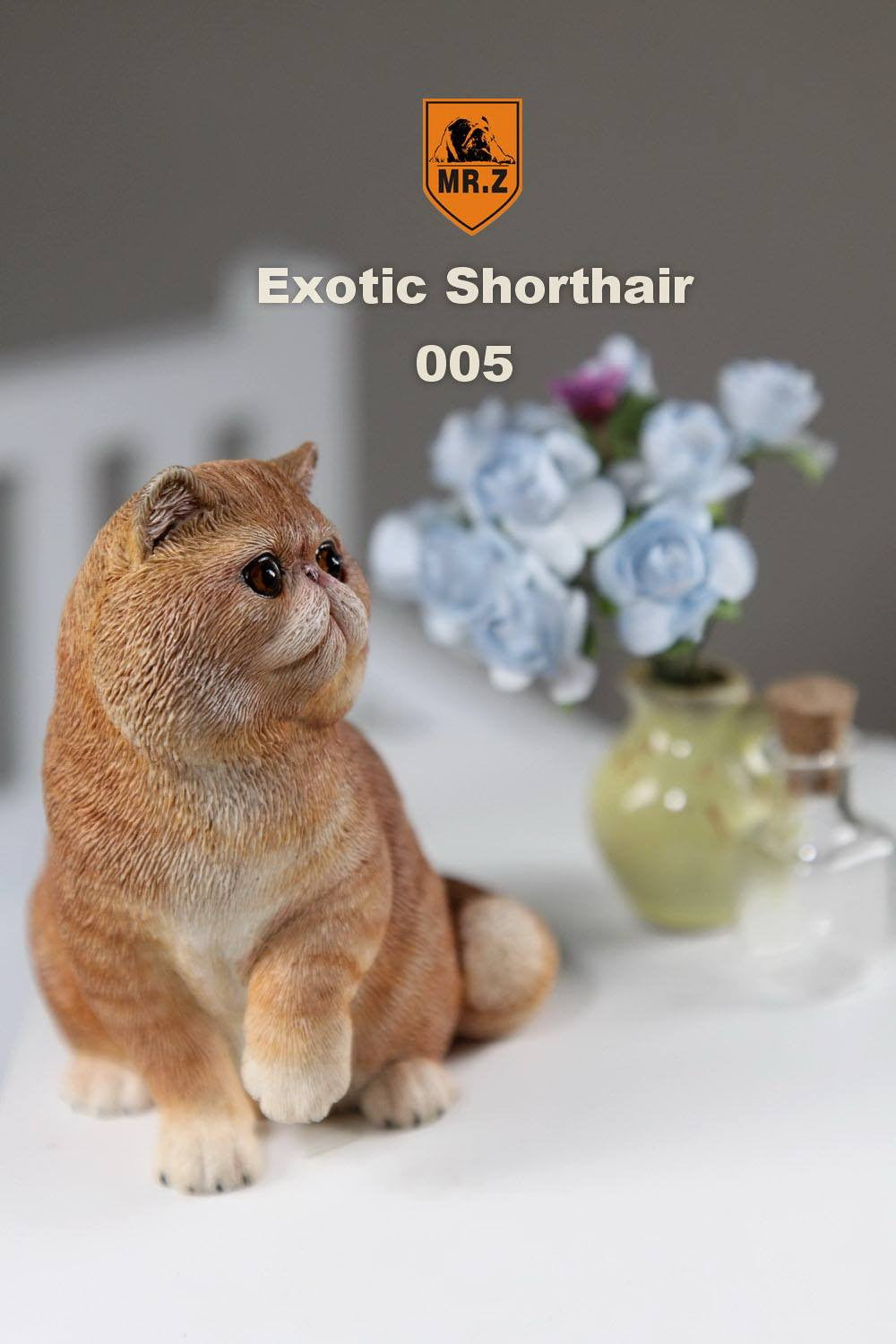 MR.Z - Real Animal Series No.8 - 1/6th Scale Exotic Shorthair Cat (Garfield) 001-005