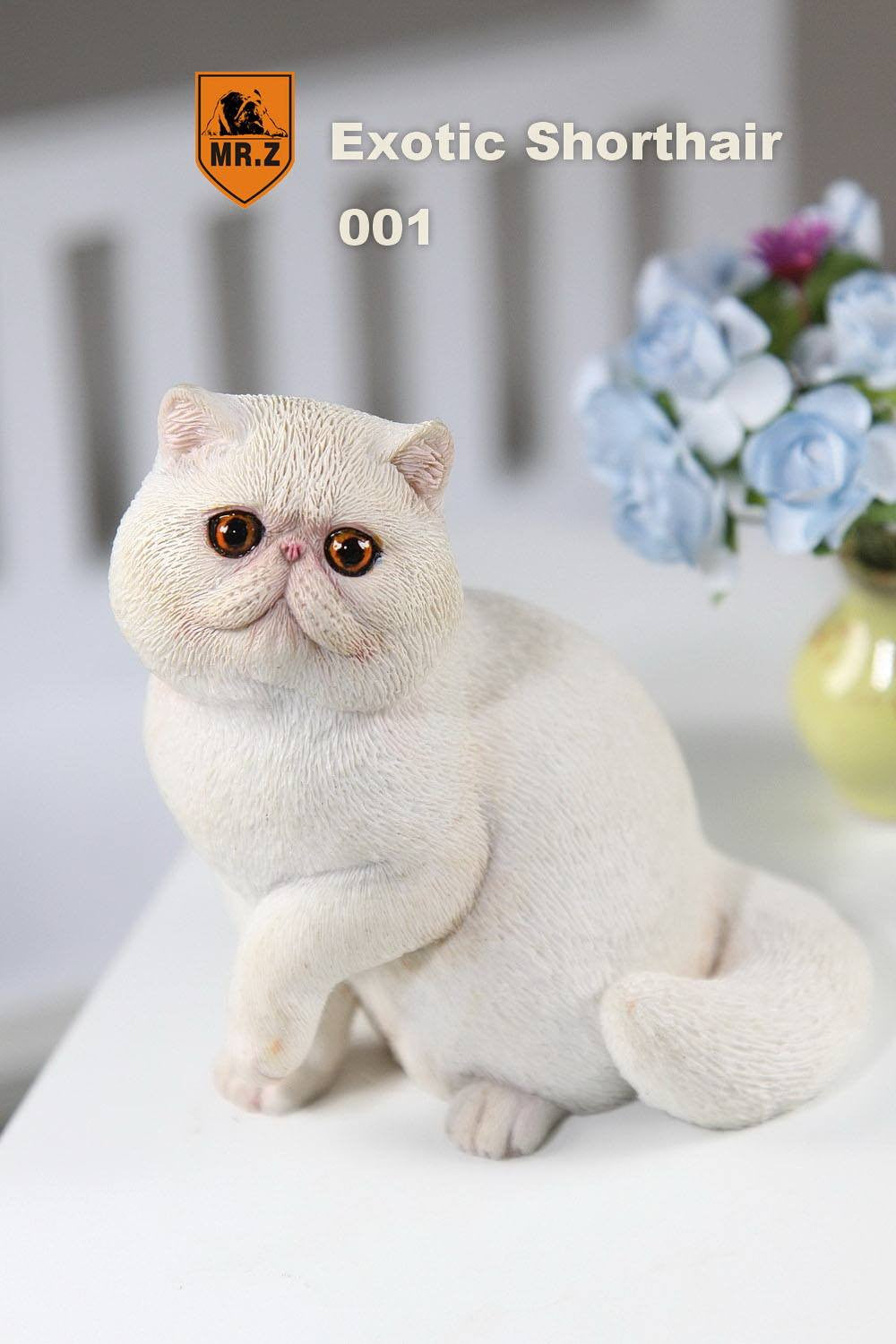 MR.Z - Real Animal Series No.8 - 1/6th Scale Exotic Shorthair Cat (Garfield) 001-005 - Marvelous Toys - 24