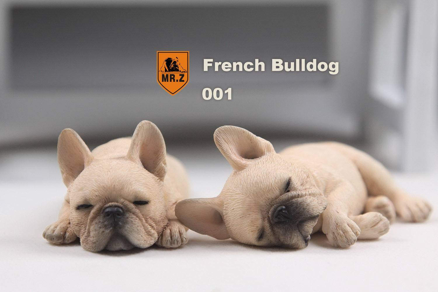 MR.Z - Real Animal Series No.9 - 1/6th Scale French Bulldog (Sleep Mode) 001-005 - Marvelous Toys - 5