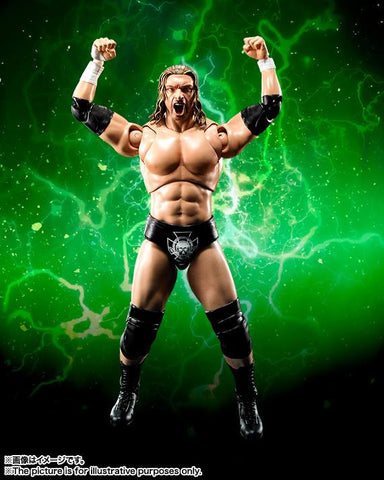 S.H.Figuarts - WWE - Triple H - Marvelous Toys - 2