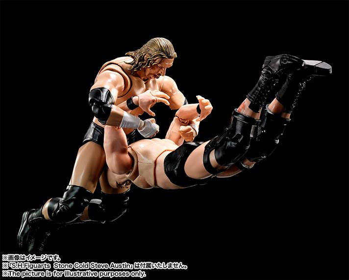 S.H.Figuarts - WWE - Triple H - Marvelous Toys - 6