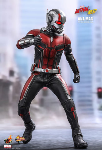 Hot Toys - MMS497 - Ant-Man and the Wasp - Ant-Man