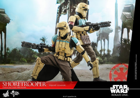 Hot Toys - MMS592 - Rogue One: A Star Wars Story - Shoretrooper Squad Leader