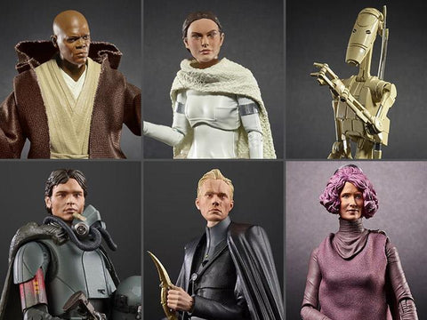 Hasbro - Star Wars: The Black Series - Battle Droid, Padme Amidala, Mace Windu, Amilyn Holdo, Han Solo, Dryden Vos (2019 Wave 1 Carton of 8)