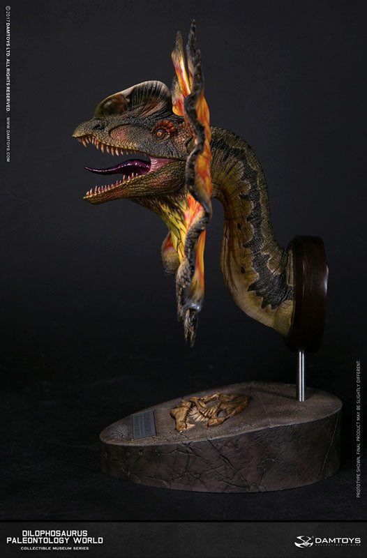Damtoys - Collectible Museum Series - Paleontology World - Dilophosaurus Bust (MUS002A)
