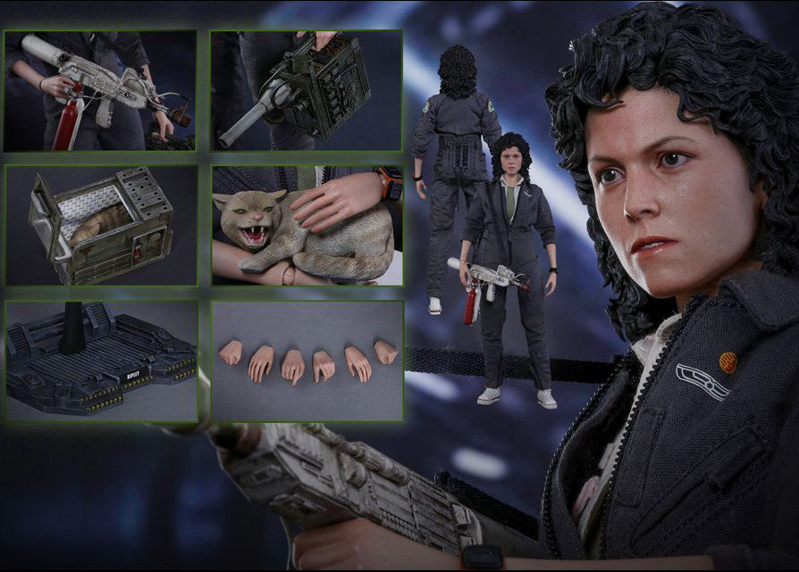 Hot Toys - MMS366 - Alien - Ellen Ripley - Marvelous Toys - 17