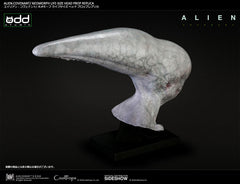Sideshow Collectibles - Alien: Covenant - Neomorph Life-Size Head Prop Replica by CoolProps