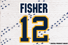 Mike Fisher #12