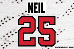Chris Neil #25