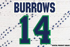 Alexandre Burrows #14