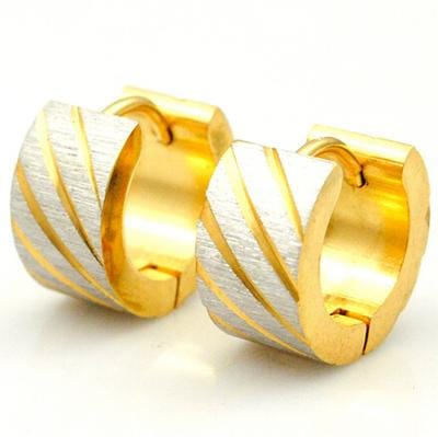 Gold color Men Earring stunds RLW1492