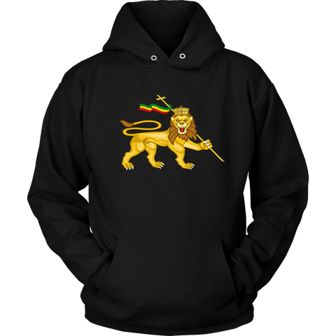 Cool lion of judah Unisex hoodie  RLW563