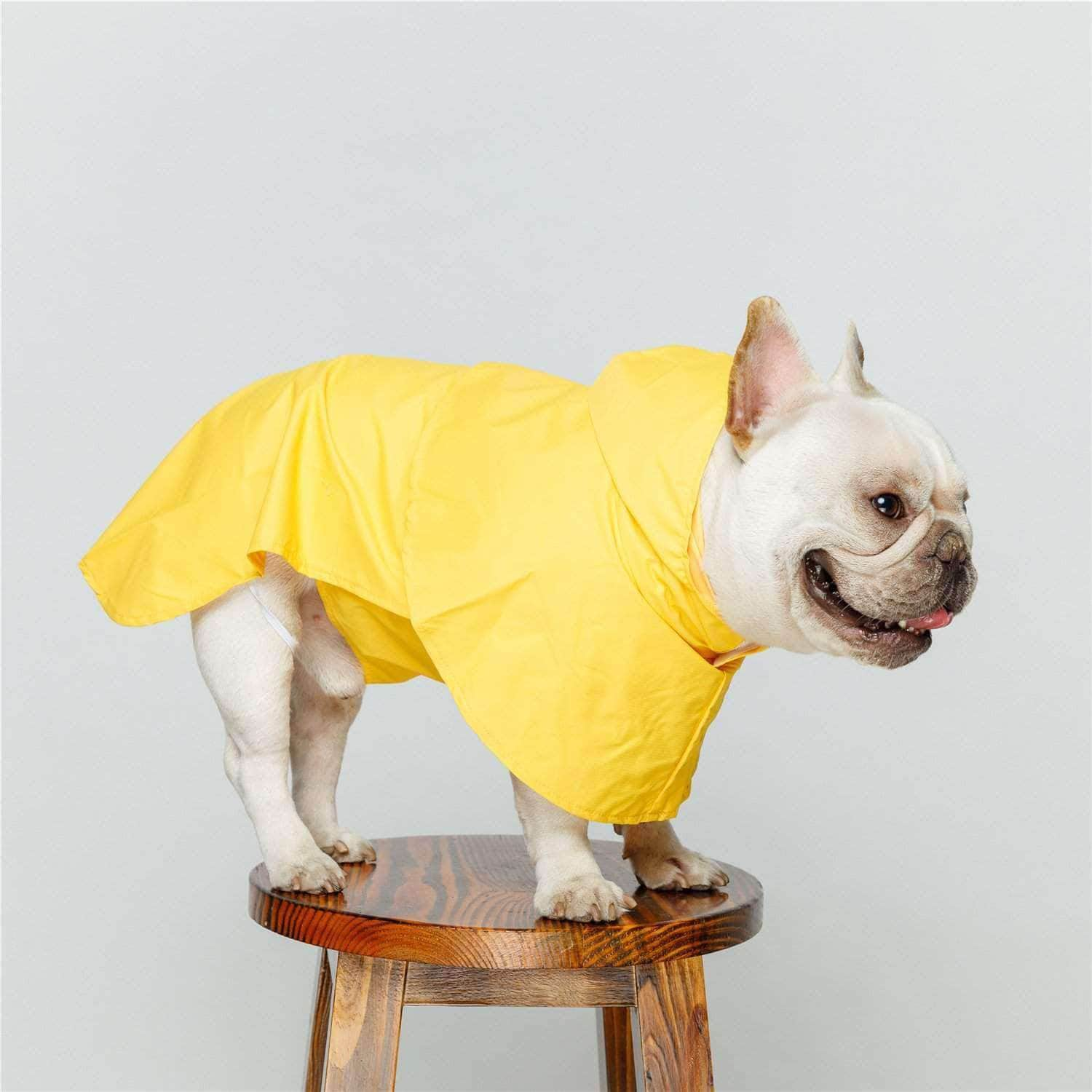 Bouledogue Avenue Pour Bouli Ciré fashion imperméable
