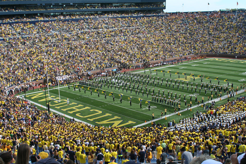 "Michigan Stadium Paper Poster (24""x36"")"