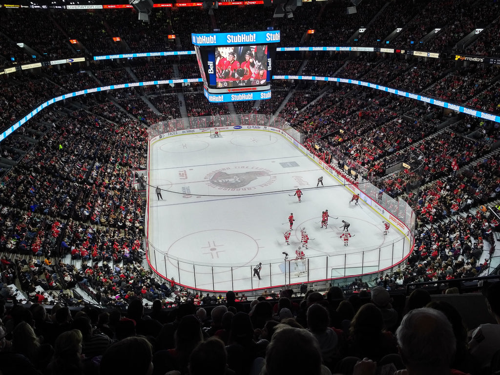 "Canadian Tire Centre Ottawa Senators Adhesive Wall Graphic (24""x36"")"